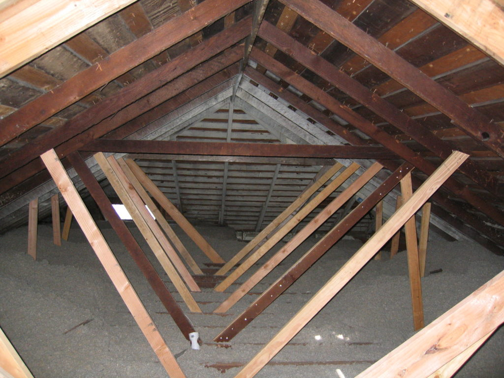 Dens' Old Attic w/Blown-In